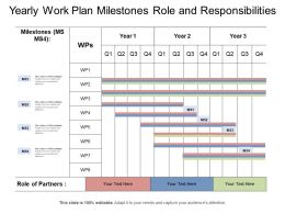 Yearly Work Plan Milestones Role And Responsibilities