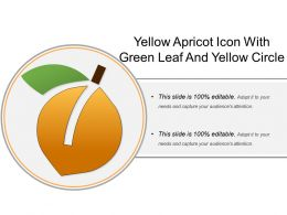 Yellow Apricot Icon With Green Leaf And Yellow Circle