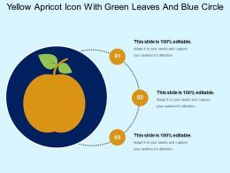 Yellow Apricot Icon With Green Leaves And Blue Circle