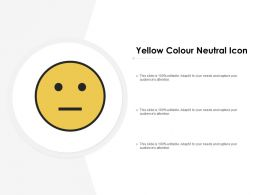 Yellow Colour Neutral Icon