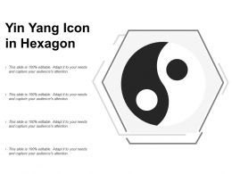 Yin Yang Icon In Hexagon
