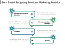 Zero Based Budgeting Solutions Marketing Analytics Techniques B2b Pricing Strategies Cpb