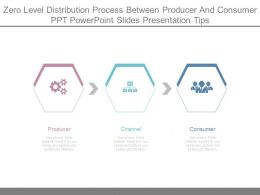 Zero Level Distribution Process Between Producer And Consumer Ppt Powerpoint Slides Presentation Tips