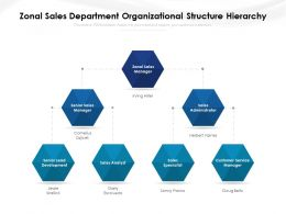 Zonal Sales Department Organizational Structure Hierarchy