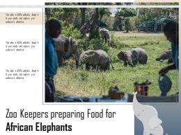 Zoo Keepers Preparing Food For African Elephants