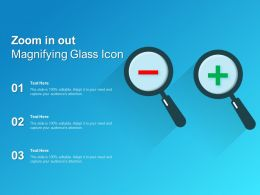 Zoom In Out Magnifying Glass Icon