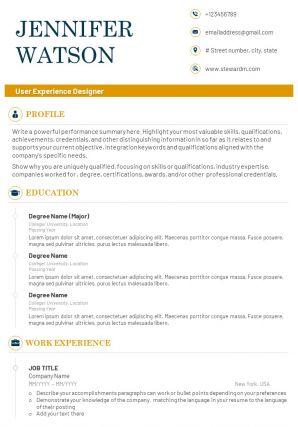 Best User Experience Designer CV Example Template