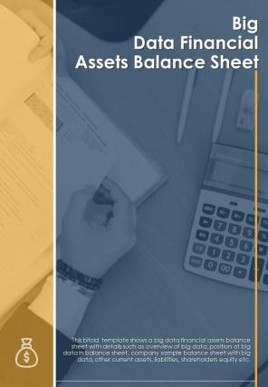 Bi Fold Big Data Financial Assets Balance Sheet Document Report PDF PPT Template