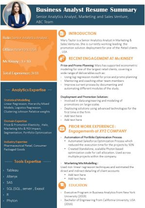 Business Analyst Resume Summary Presentation Report Infographic PPT PDF Document