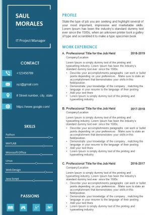 Career Statement Sample CV Template For It Project Manager