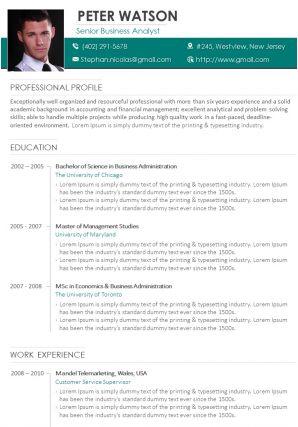 Career Statement Sample CV Template For Senior Business Analyst