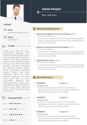 Career Summary Example Resume CV Template