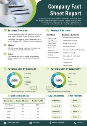 Company Fact Sheet Report Presentation Infographic PPT PDF Document