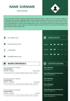 CV Format With Summary With Education And Work Experience