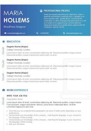 Example CV Template For WordPress Designer