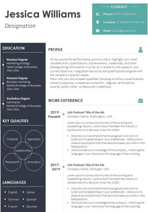 Example Resume CV Template With Career Summary