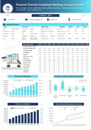 Financial Overview Investment Banking One Page Summary Report PPT PDF Document