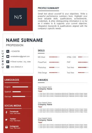 Impactful Professional CV Sample Template