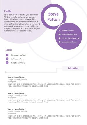 Impactful Professional Resume Example Format