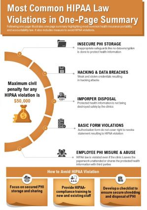 Most Common HIPAA Law Violations In One Page Summary Presentation Report Infographic PPT PDF Document
