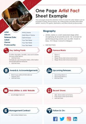One Page Artist Fact Sheet Example Presentation Report Infographic PPT PDF Document