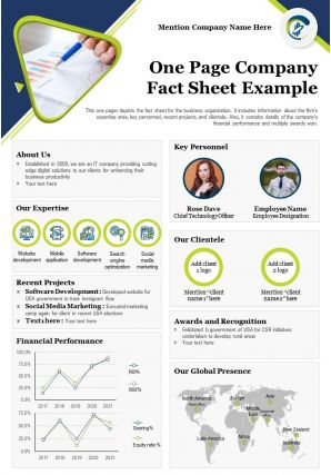 One Page Company Fact Sheet Example Presentation Report Infographic PPT PDF Document