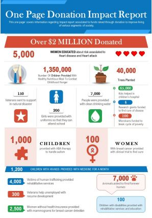 One Page Donation Impact Report Presentation Report Infographic PPT PDF Document