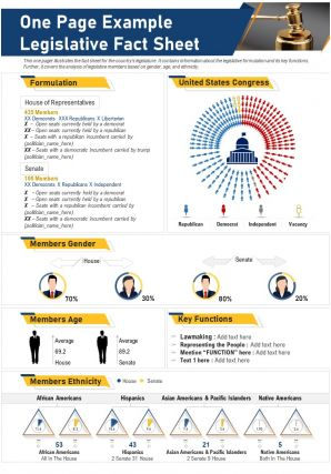 One Page Example Legislative Fact Sheet Presentation Report Infographic PPT PDF Document