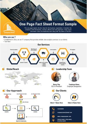 One Page Fact Sheet Format Sample Presentation Report Infographic PPT PDF Document