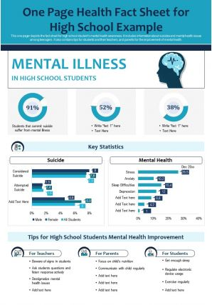 One Page Health Fact Sheet For High School Example Report PPT PDF Document