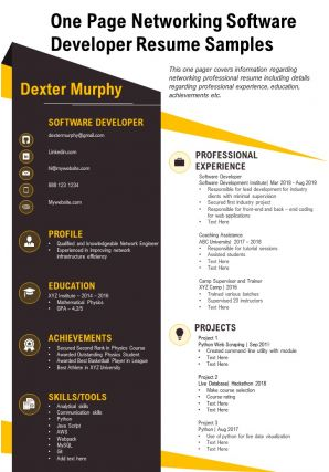 One Page Networking Software Developer Resume Samples Presentation Report Infographic PPT PDF Document
