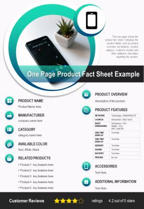 One Page Product Fact Sheet Example Presentation Report Infographic PPT PDF Document