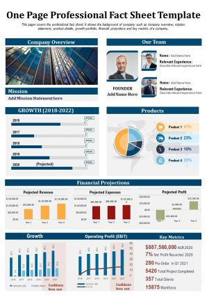 One Page Professional Fact Sheet Template Presentation Report Infographic PPT PDF Document