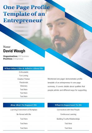 One Page Profile Template Of An Entrepreneur Presentation Report Infographic PPT PDF Document