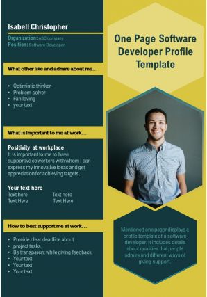 One Page Software Developer Profile Template Presentation Report Infographic PPT PDF Document
