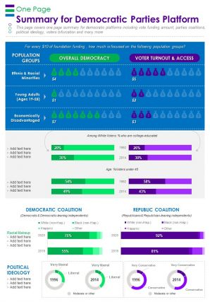 One Page Summary For Democratic Parties Platform Presentation Report Infographic PPT PDF Document