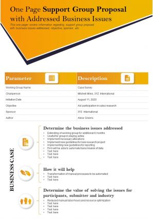 One Page Support Group Proposal With Addressed Business Issues Report Infographic PPT PDF Document