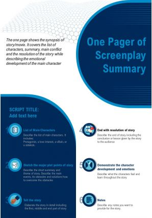 One Pager Of Screenplay Summary Presentation Report Infographic PPT PDF Document