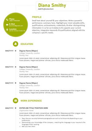 Professional CV Sample With Previous Work Details