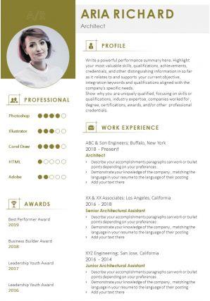 Professional Resume Summary Example Format