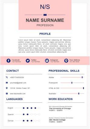 Professional Summary CV Example Format