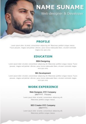 Sample Curriculum Vitae Of Web Designer And Developer
