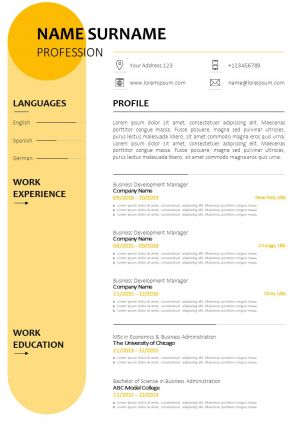Sample CV Bio Data Format With Job History