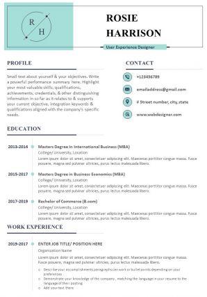 Sample Resume For User Experience Designer