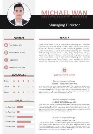 Sample Resume Format With Skills Summary