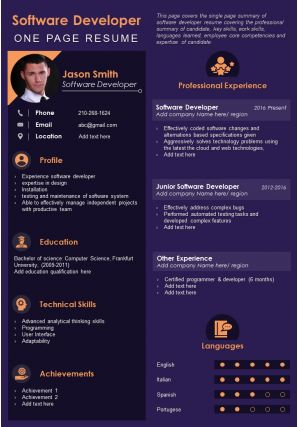 Software Developer One Page Resume Presentation Report Infographic PPT PDF Document