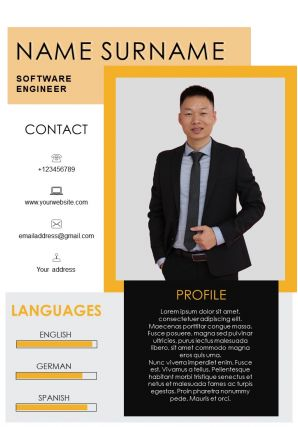 Sample Of Resume For Software Engineer