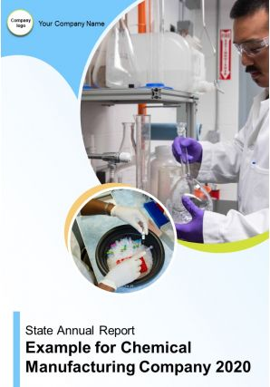 State Annual Report Example For Chemical Manufacturing Company PDF DOC PPT Document Report Template