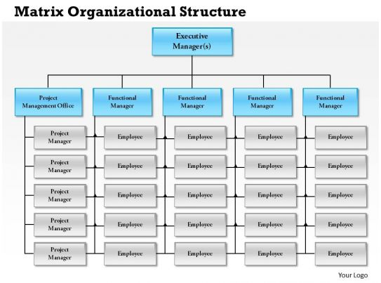 0514 Matrix Organizational Structure Powerpoint