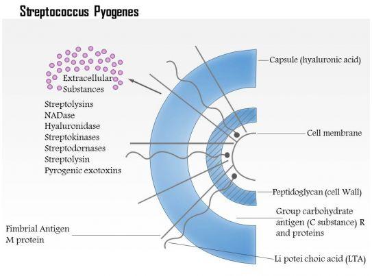 Pyogenes case study